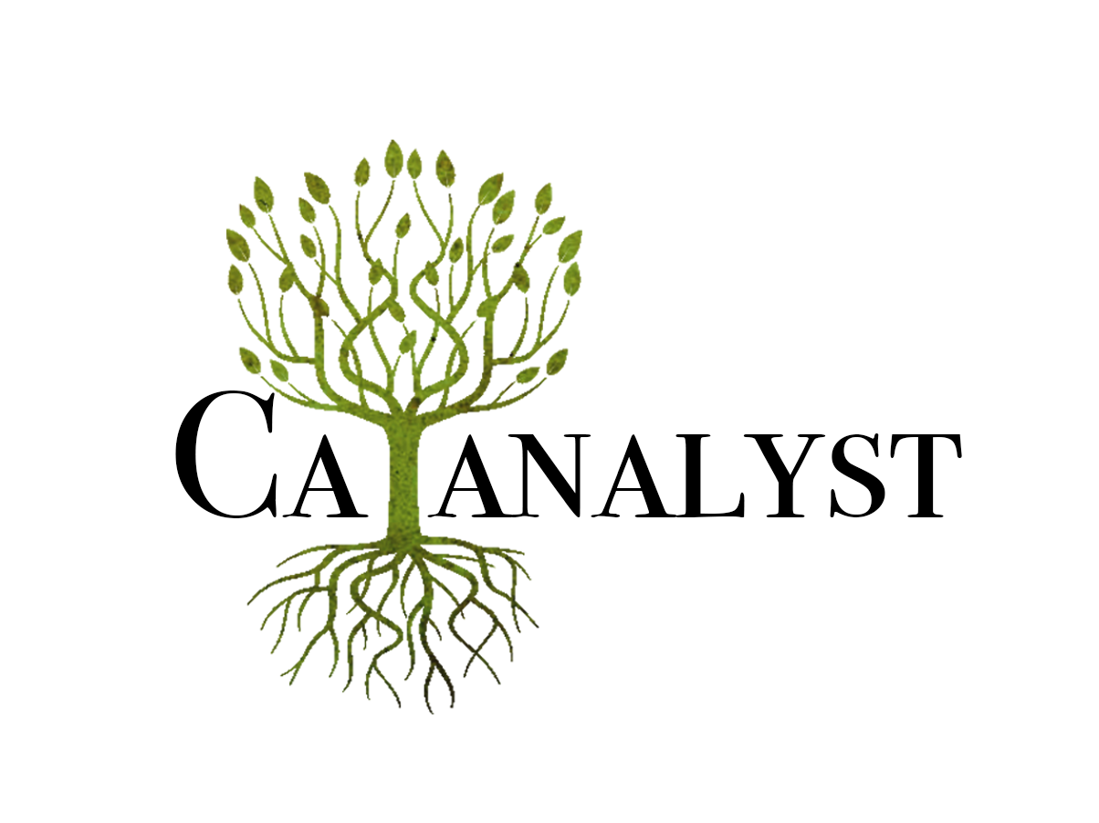 Catanalyst
